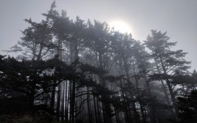 Haunted Places on the Long Beach Peninsula