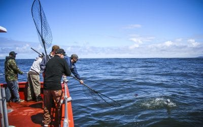 Fishing out of Ilwaco