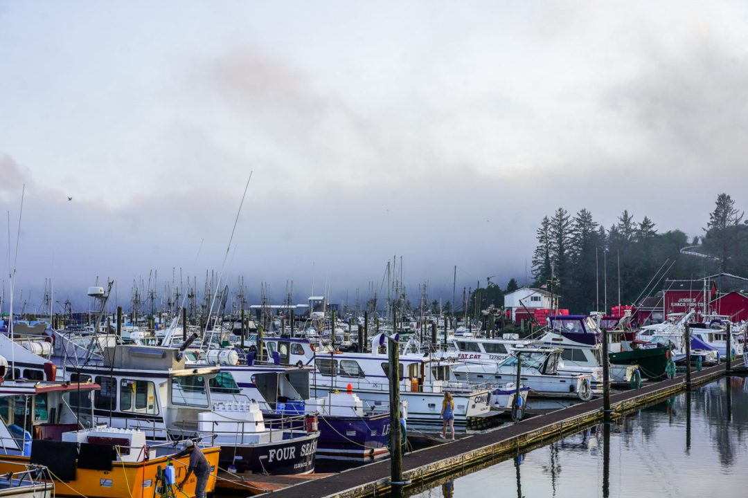 Port of Ilwaco by Stephanie Forrer