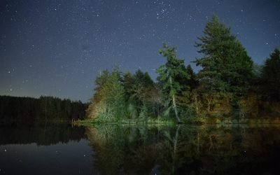 9 Starry Nights on Washington's Long Beach Peninsula