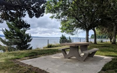 17 Gorgeous Picnic Spots in Pacific County