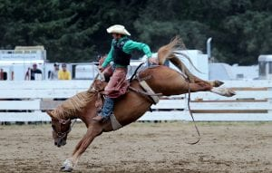 Long Beach Rodeo photo by Sharon Feakes