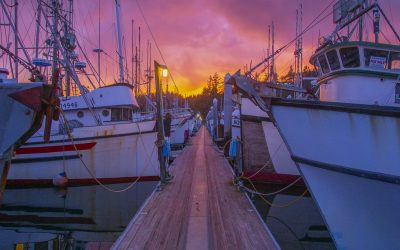 Port of Ilwaco at Sunset